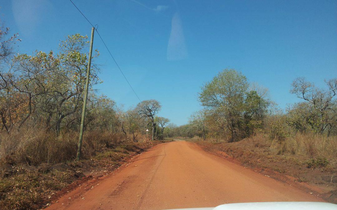 Situazione sicurezza: un ritorno alla normalità nella possibilità di movimento e attività a Sofala