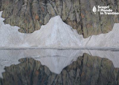 Cristina Galliziolli: L'eco dei ghiacci