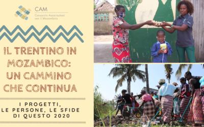 Il Trentino in Mozambico: un cammino che continua – incontro online