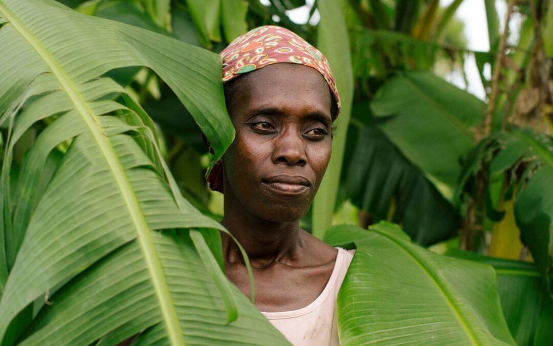 Il mare si sta alzando, il clima sta cambiando: le lezioni apprese dal terribile ciclone Idai in Mozambico